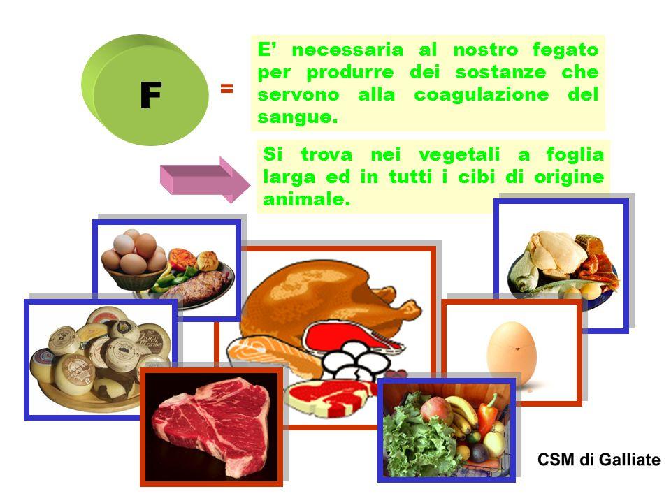 E' necessaria al nostro fegato per produrre dei sostanze che servono alla coagulazione del sangue.