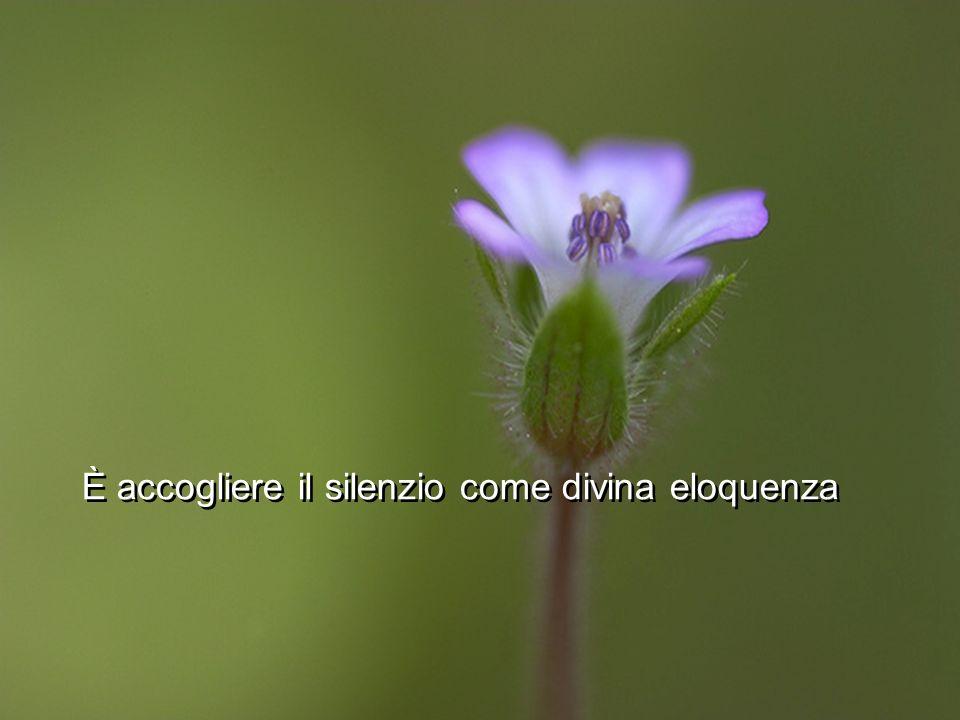 È accogliere il silenzio come divina eloquenza