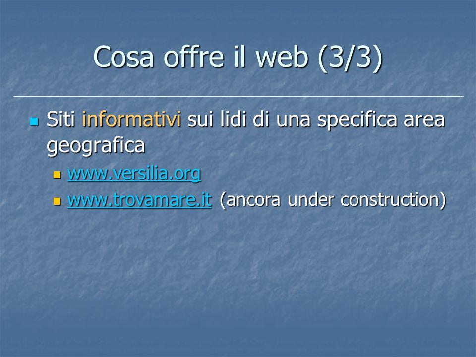 Cosa offre il web (3/3) Siti informativi sui lidi di una specifica area geografica. www.versilia.org.