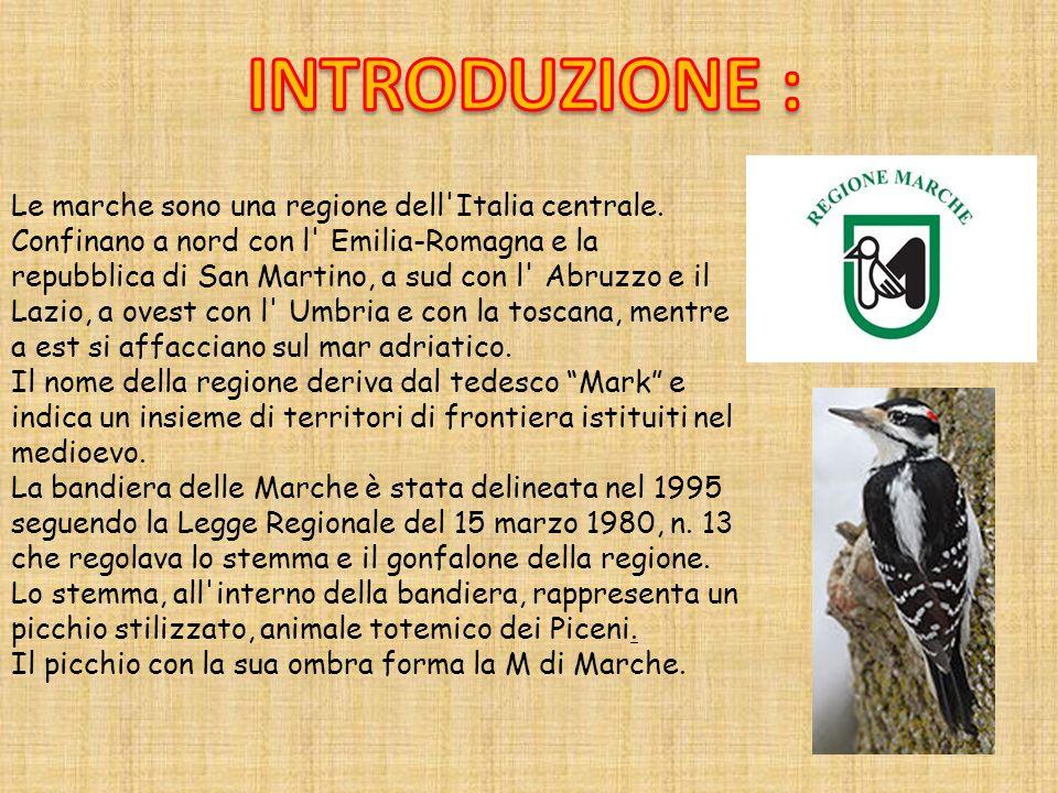 INTRODUZIONE : Le marche sono una regione dell Italia centrale.