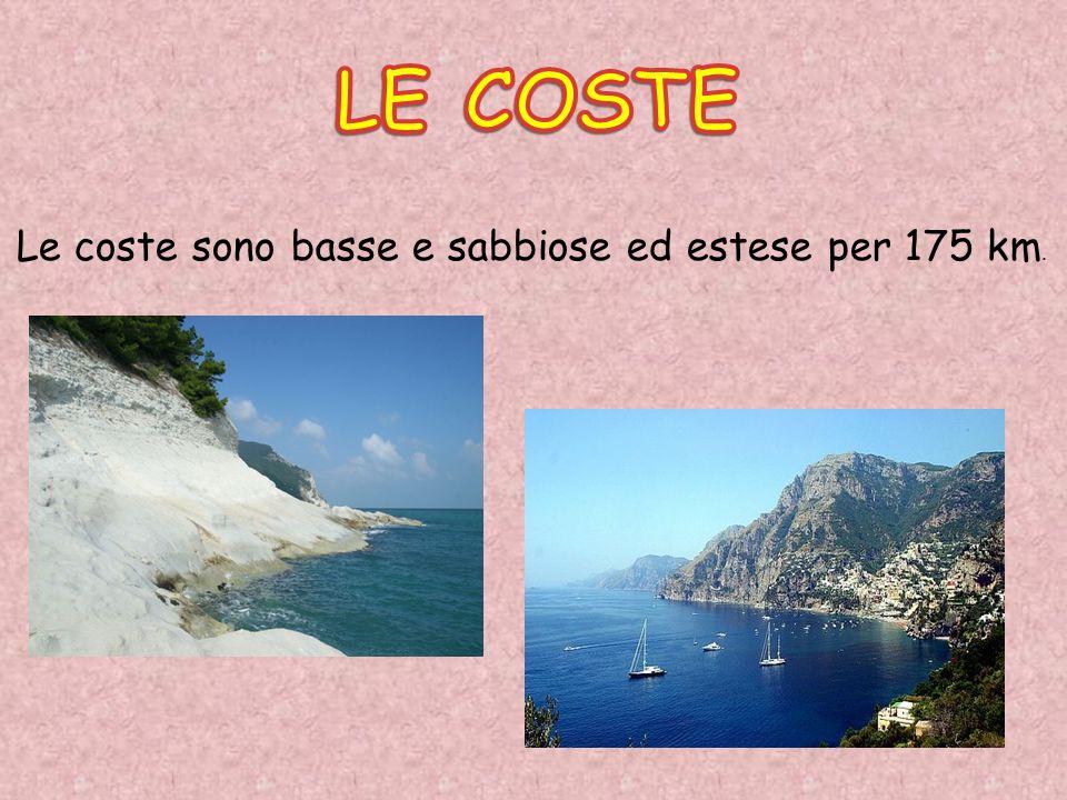 LE COSTE Le coste sono basse e sabbiose ed estese per 175 km.
