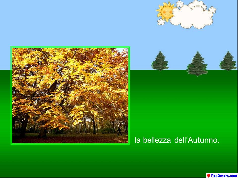 la bellezza dell'Autunno.