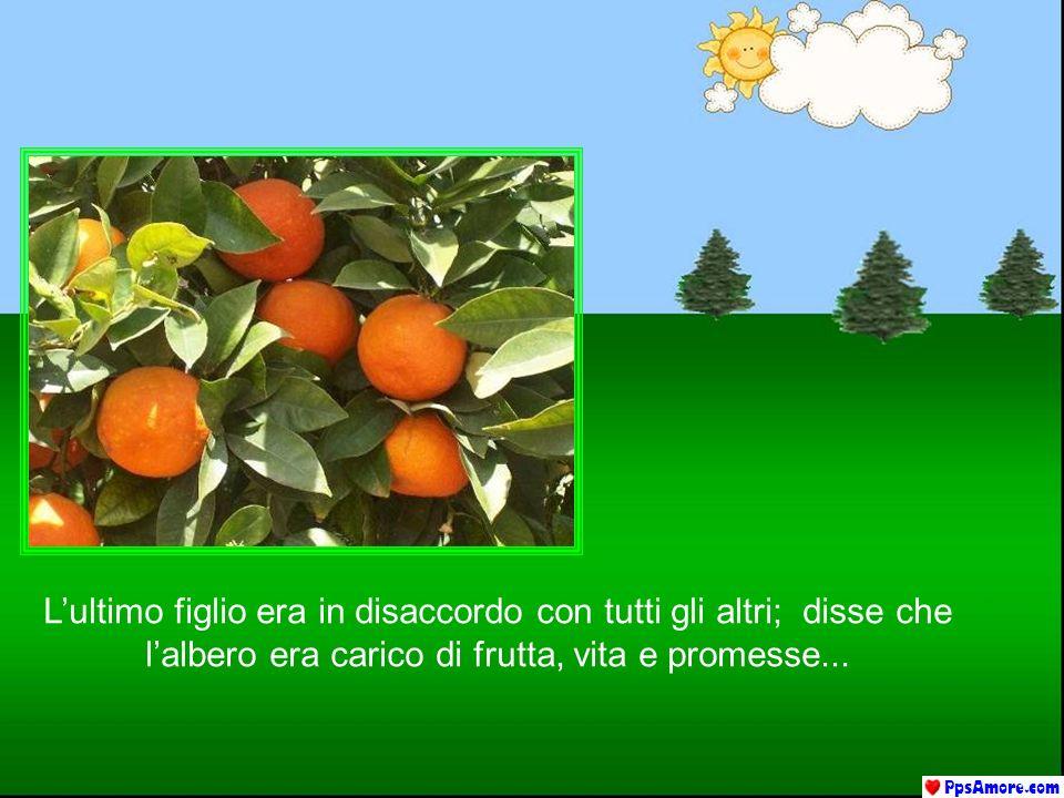 L'ultimo figlio era in disaccordo con tutti gli altri; disse che l'albero era carico di frutta, vita e promesse...
