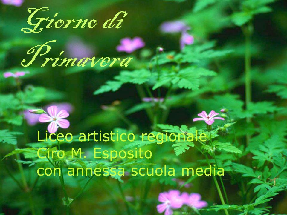 Giorno di Primavera Liceo artistico regionale Ciro M. Esposito