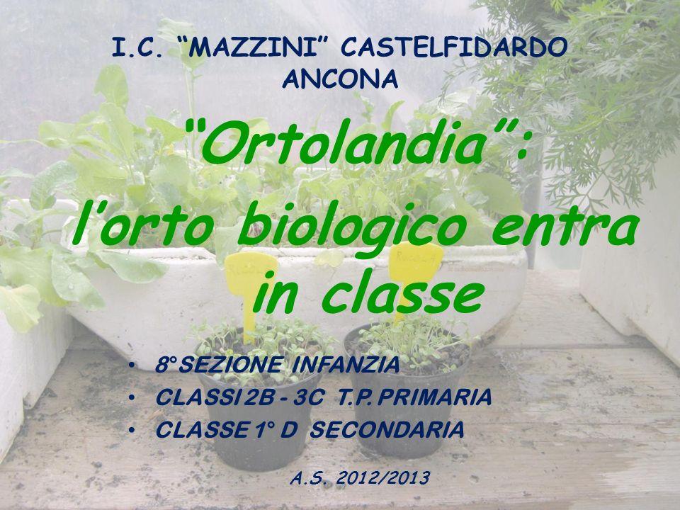 I.C. MAZZINI CASTELFIDARDO ANCONA