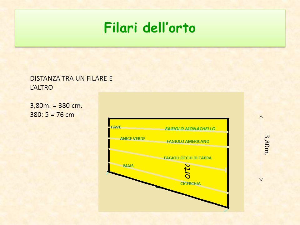 Filari dell'orto DISTANZA TRA UN FILARE E L'ALTRO 3,80m. = 380 cm.