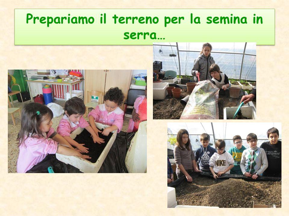 Prepariamo il terreno per la semina in serra…