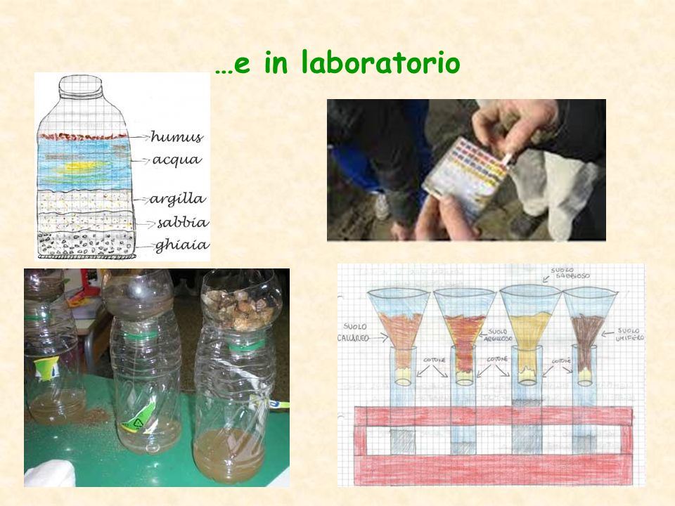 …e in laboratorio