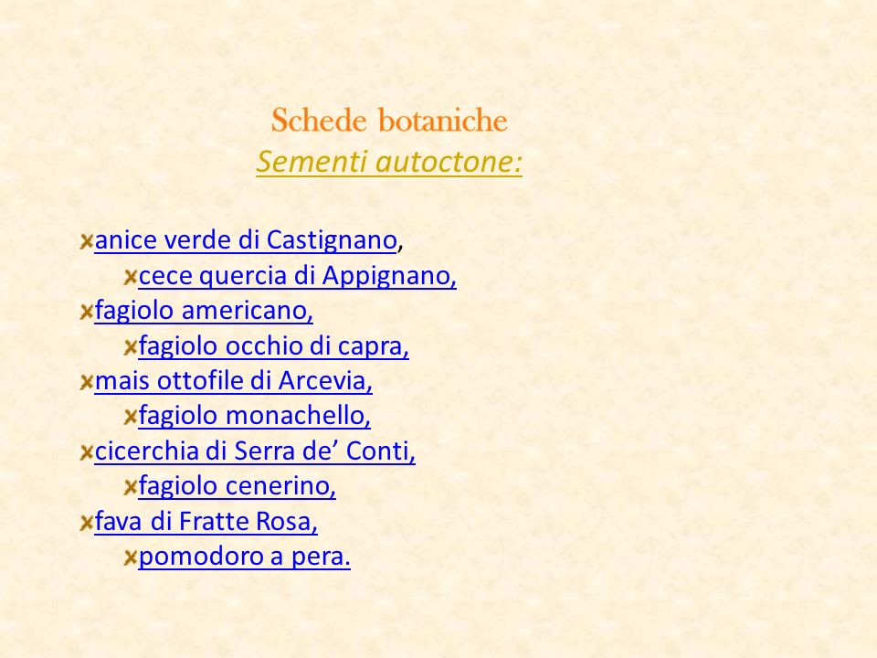 Schede botaniche Sementi autoctone: anice verde di Castignano,