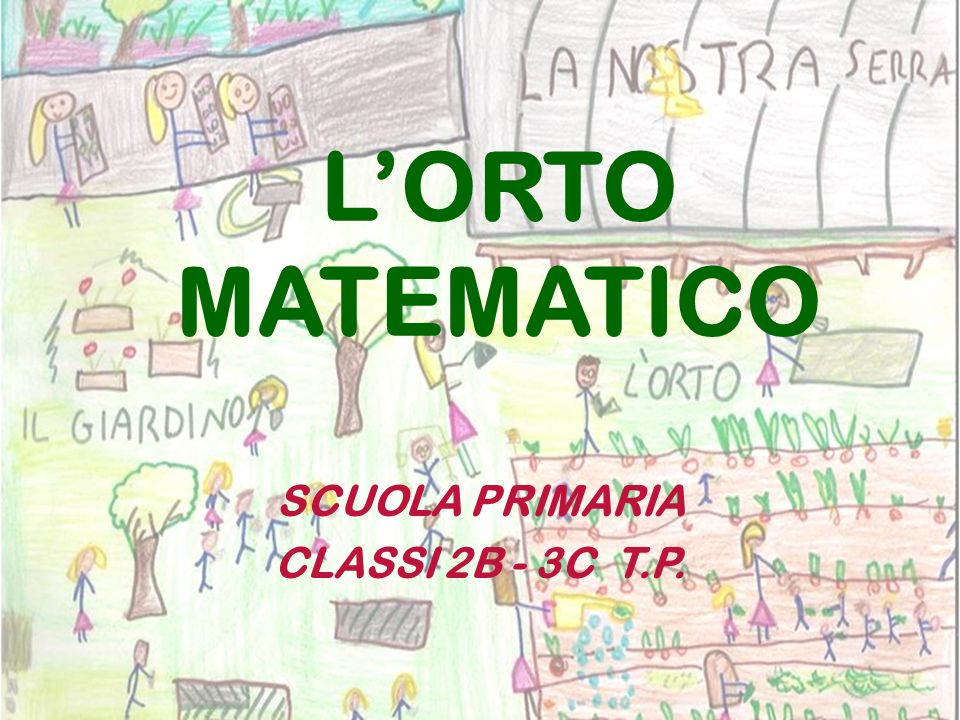 SCUOLA PRIMARIA CLASSI 2B - 3C T.P.