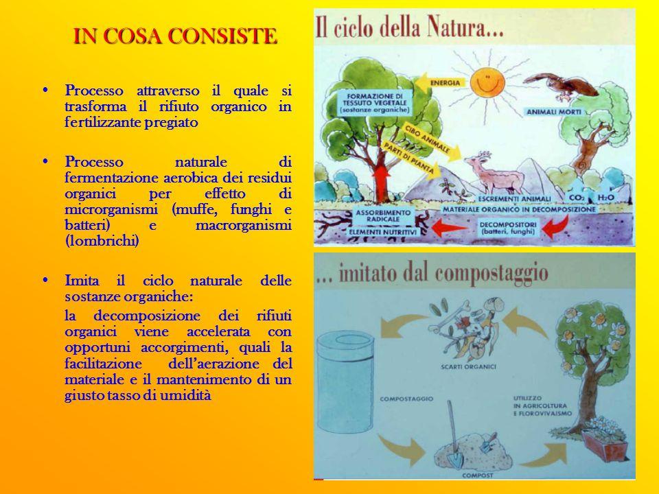 IN COSA CONSISTE Processo attraverso il quale si trasforma il rifiuto organico in fertilizzante pregiato.