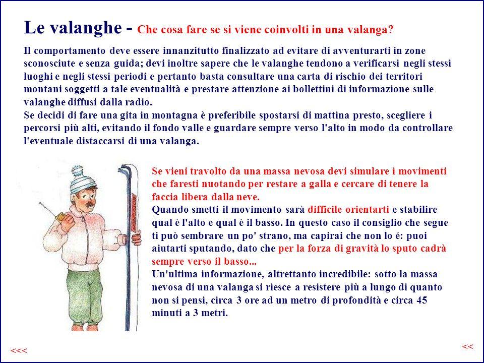 Le valanghe - Che cosa fare se si viene coinvolti in una valanga