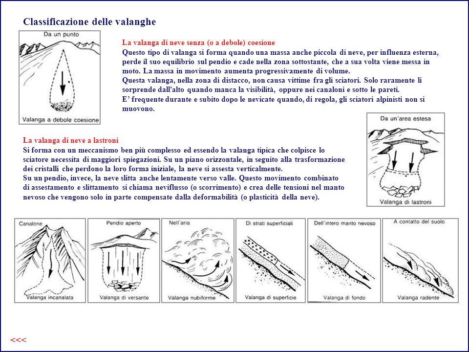 Classificazione delle valanghe
