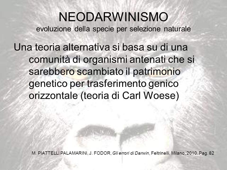 NEODARWINISMO evoluzione della specie per selezione naturale
