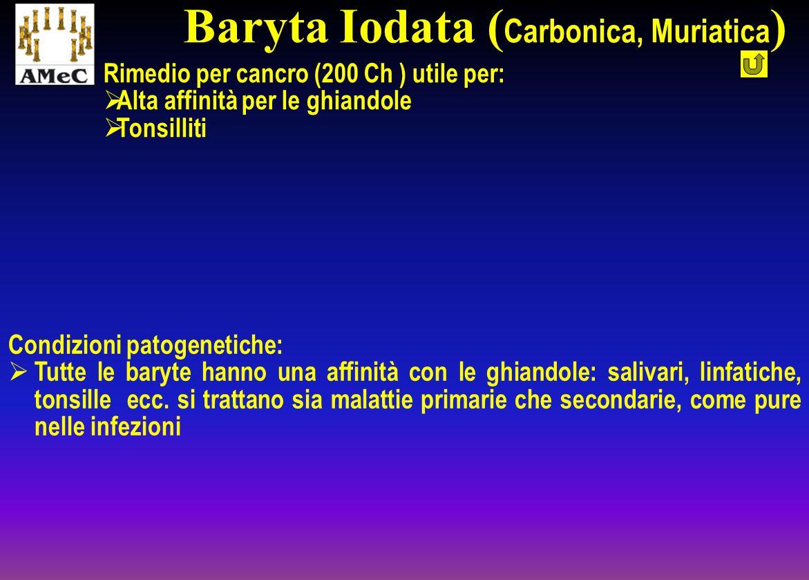 Baryta Iodata (Carbonica, Muriatica)
