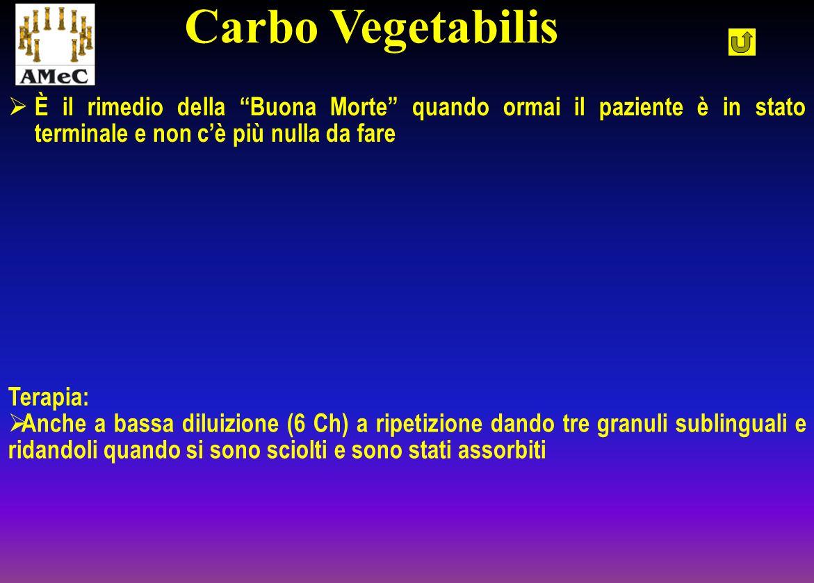 Carbo VegetabilisÈ il rimedio della Buona Morte quando ormai il paziente è in stato terminale e non c'è più nulla da fare.