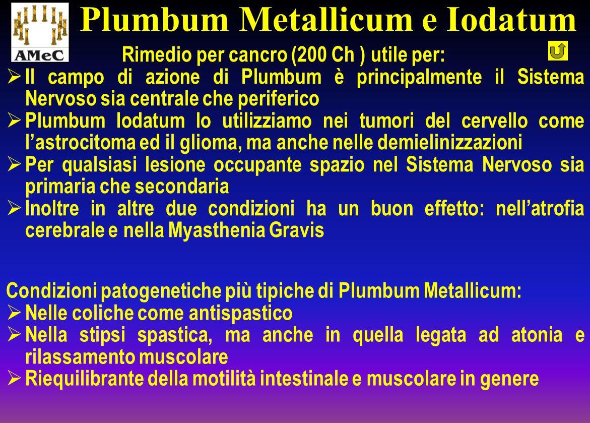 Plumbum Metallicum e Iodatum