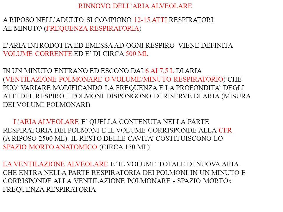RINNOVO DELL'ARIA ALVEOLARE