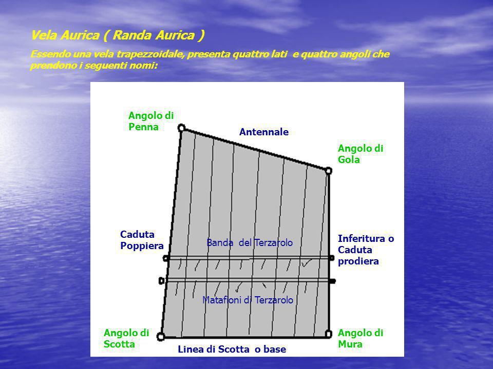 Vela Aurica ( Randa Aurica )