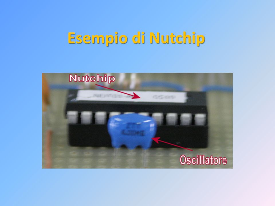 Esempio di Nutchip