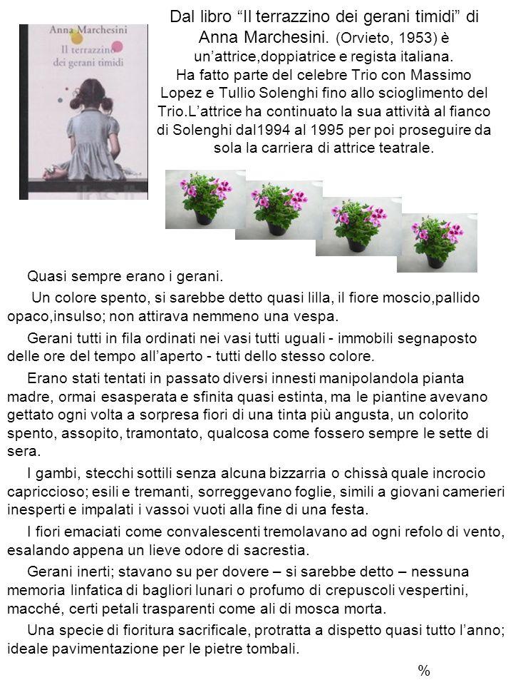 Dal libro Il terrazzino dei gerani timidi di Anna Marchesini