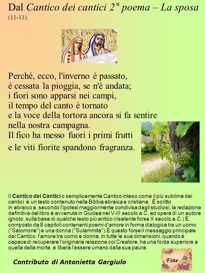 Contributo di Antonietta Gargiulo