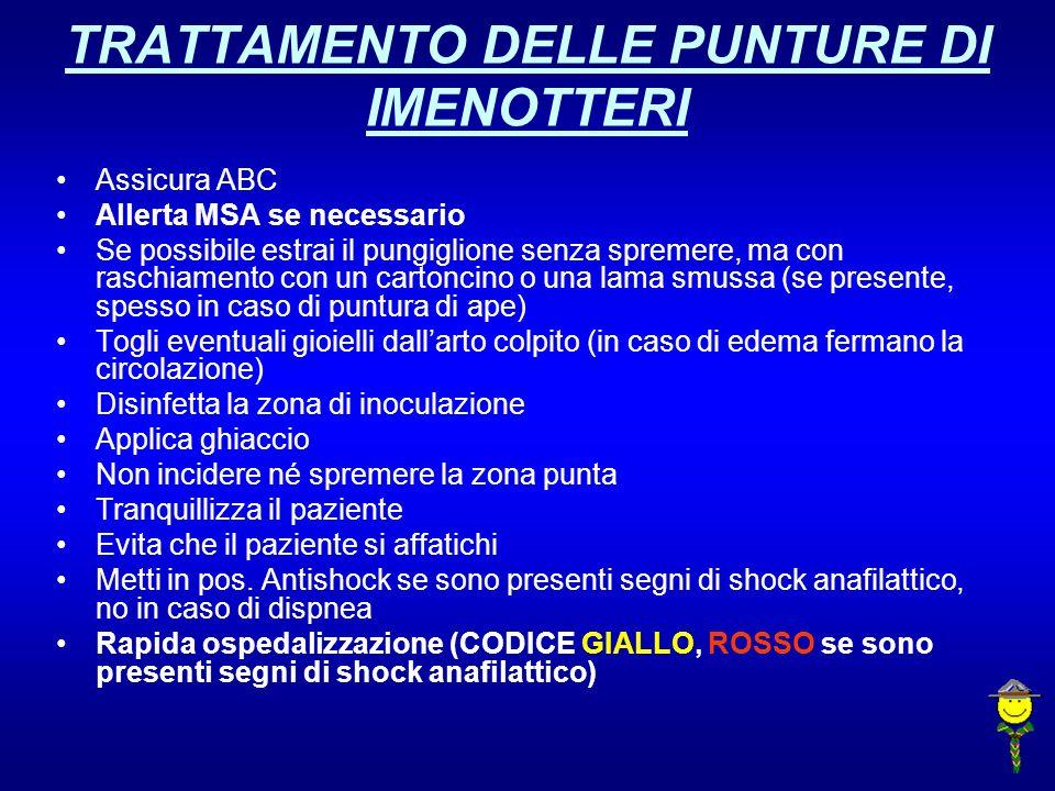 TRATTAMENTO DELLE PUNTURE DI IMENOTTERI