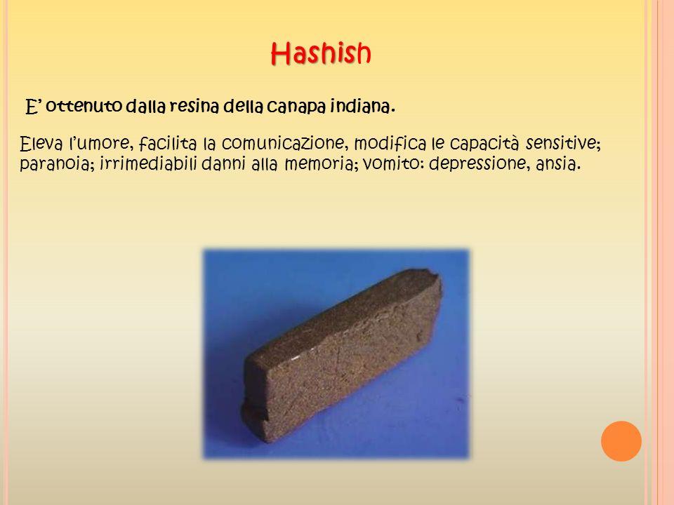 Hashish E' ottenuto dalla resina della canapa indiana.
