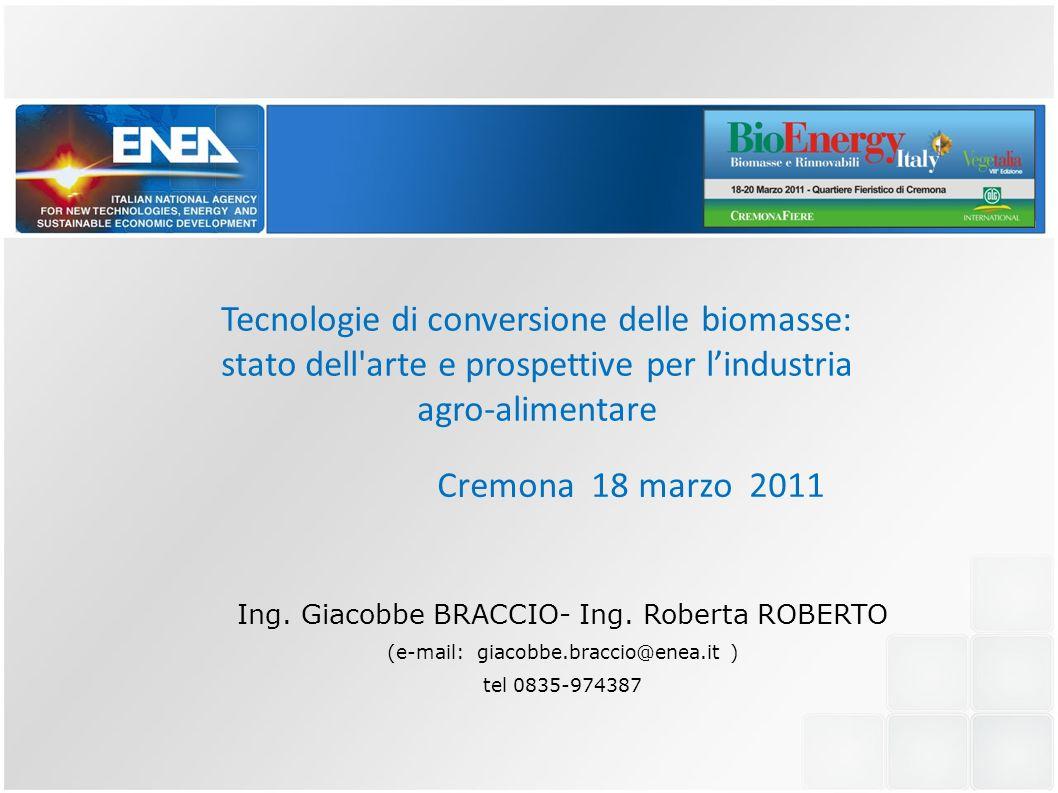 Tecnologie di conversione delle biomasse: