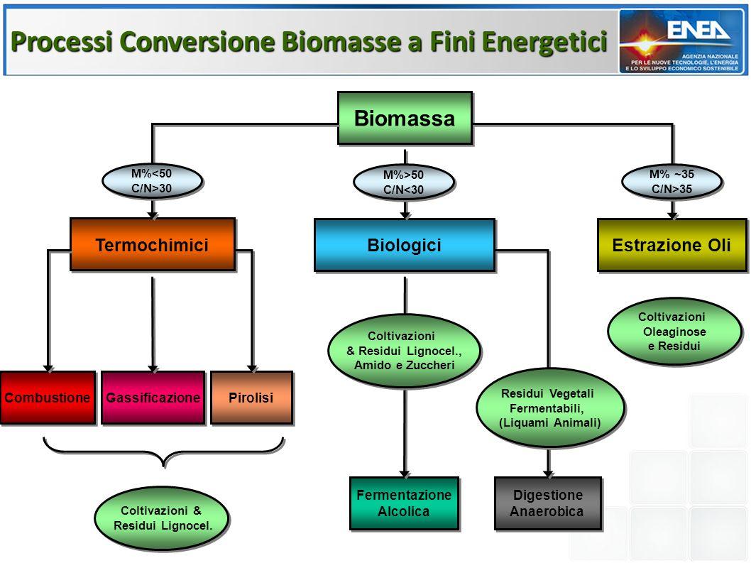 Processi Conversione Biomasse a Fini Energetici