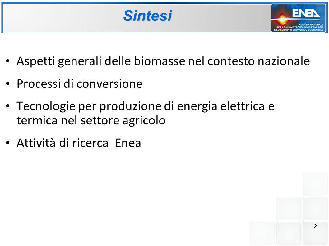 Sintesi Aspetti generali delle biomasse nel contesto nazionale