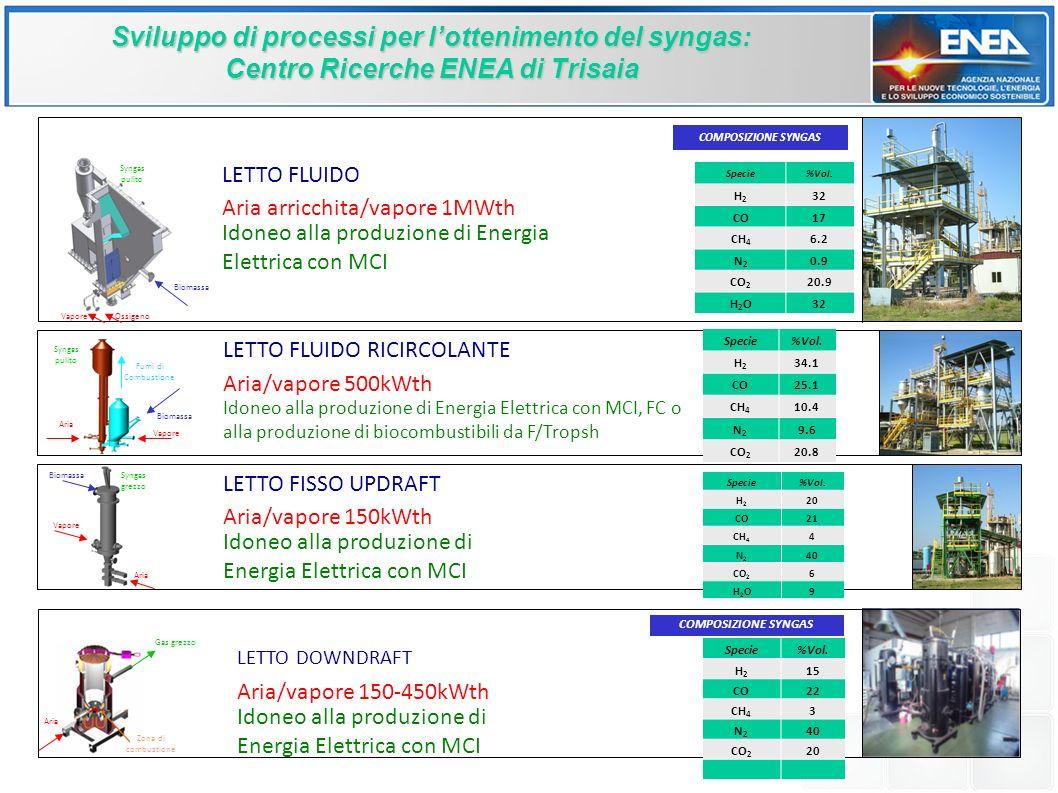 Sviluppo di processi per l'ottenimento del syngas: