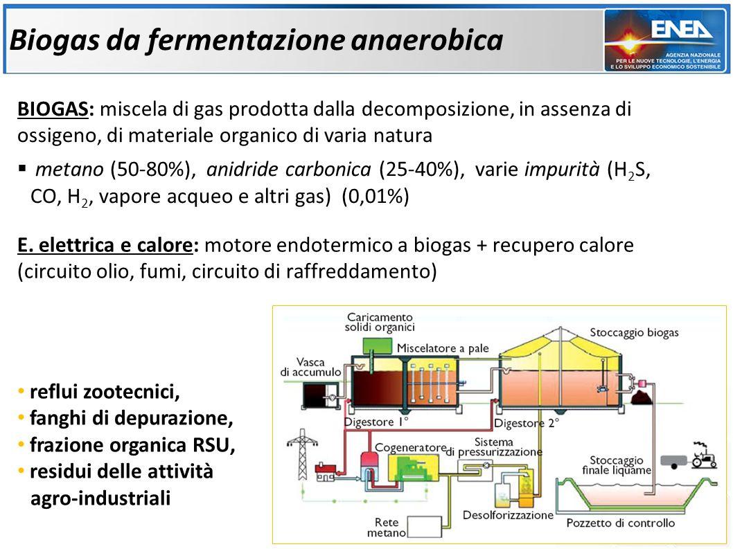 Biogas da fermentazione anaerobica
