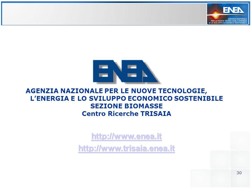http://www.enea.it http://www.trisaia.enea.it