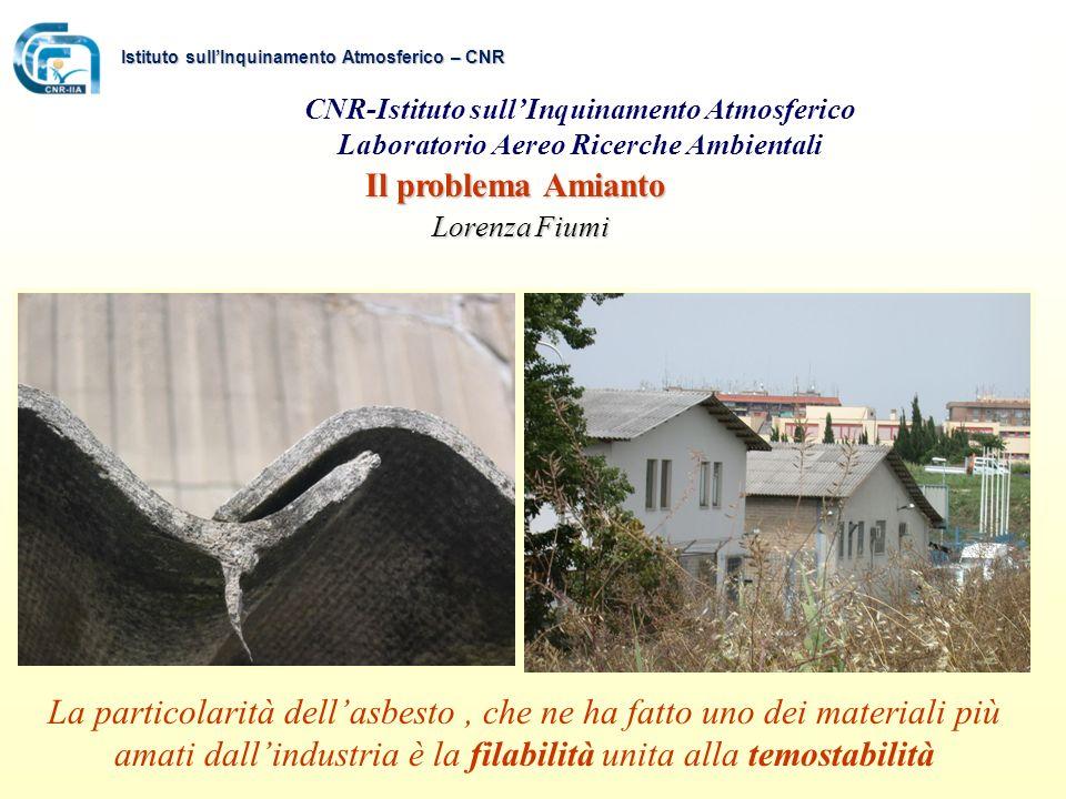 Istituto sull'Inquinamento Atmosferico – CNR