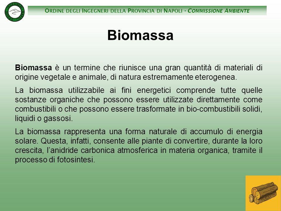 Biomassa Biomassa è un termine che riunisce una gran quantità di materiali di origine vegetale e animale, di natura estremamente eterogenea.