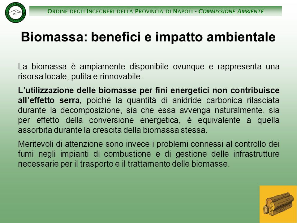 Biomassa: benefici e impatto ambientale