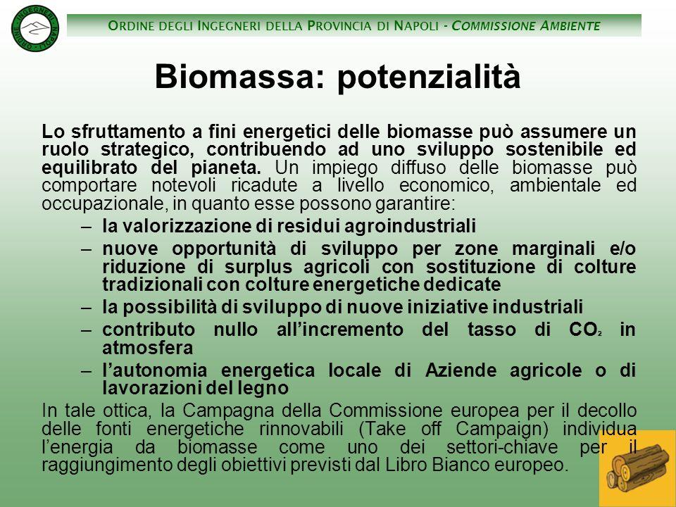 Biomassa: potenzialità
