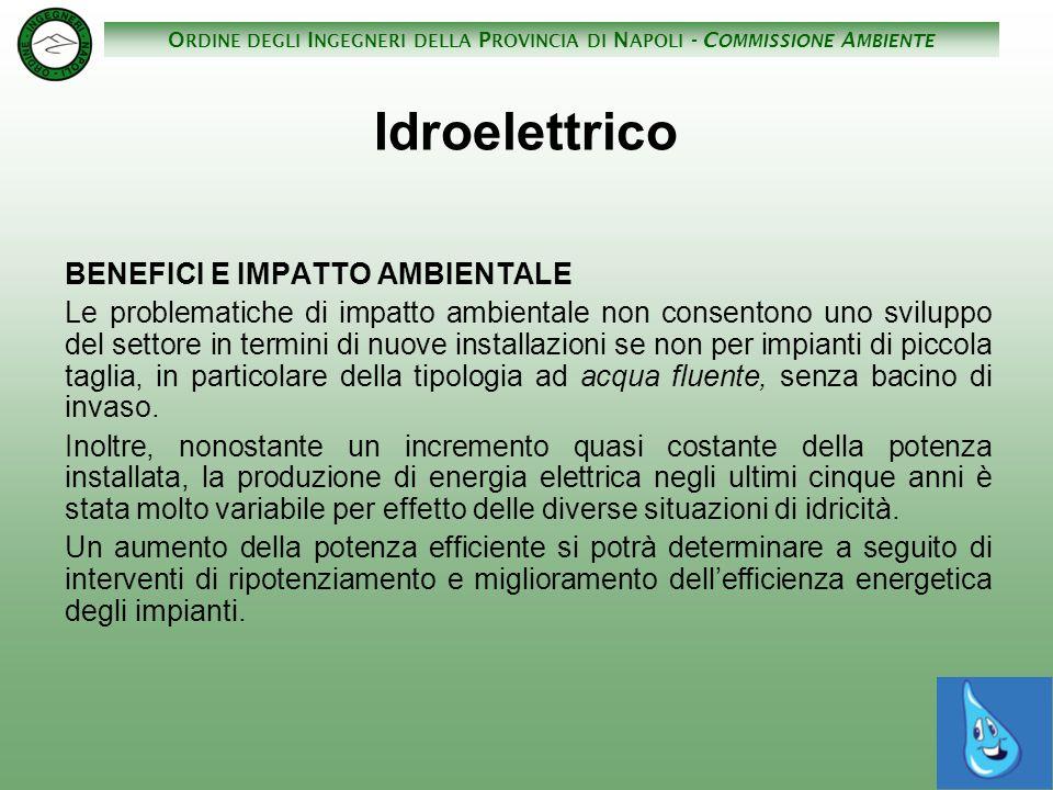 Idroelettrico BENEFICI E IMPATTO AMBIENTALE