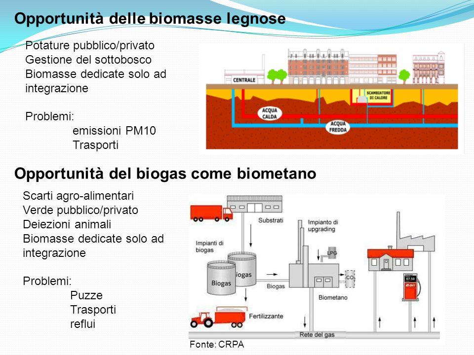 Opportunità delle biomasse legnose