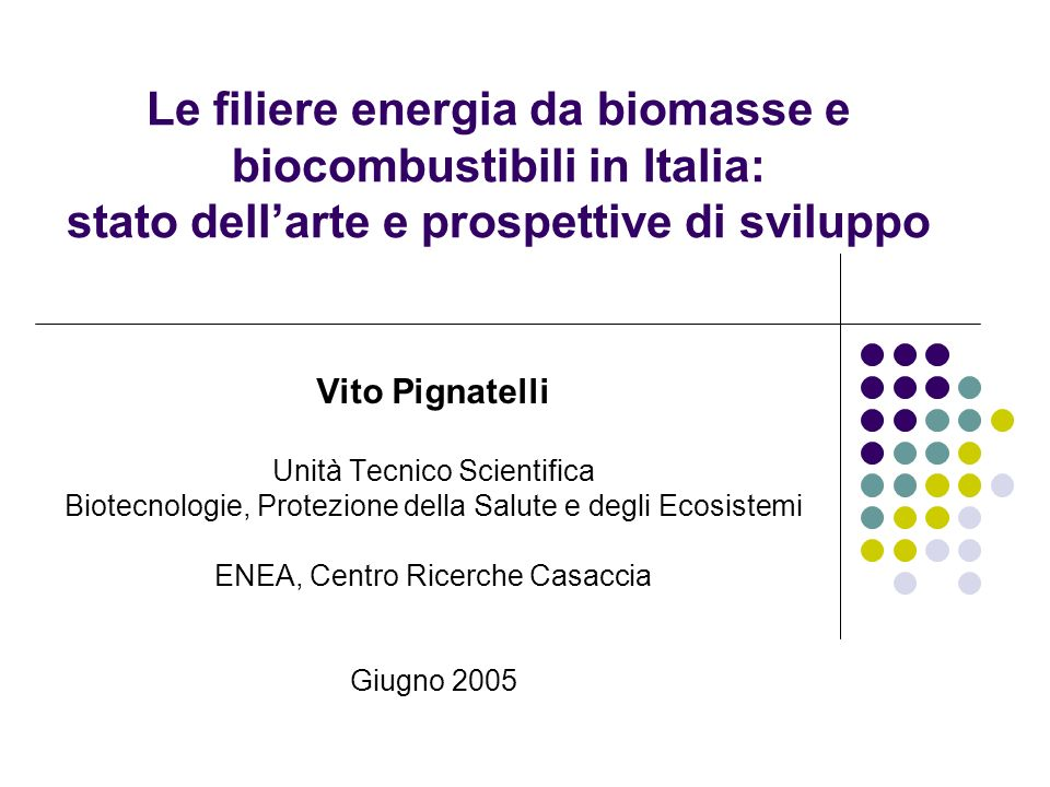 Le filiere energia da biomasse e biocombustibili in Italia: stato dell'arte e prospettive di sviluppo