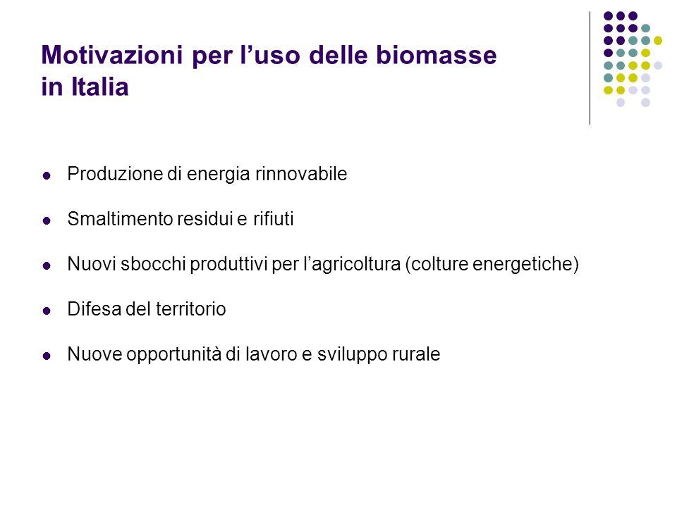 Motivazioni per l'uso delle biomasse in Italia