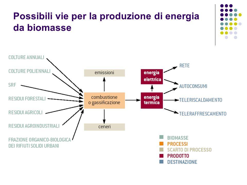 Possibili vie per la produzione di energia da biomasse