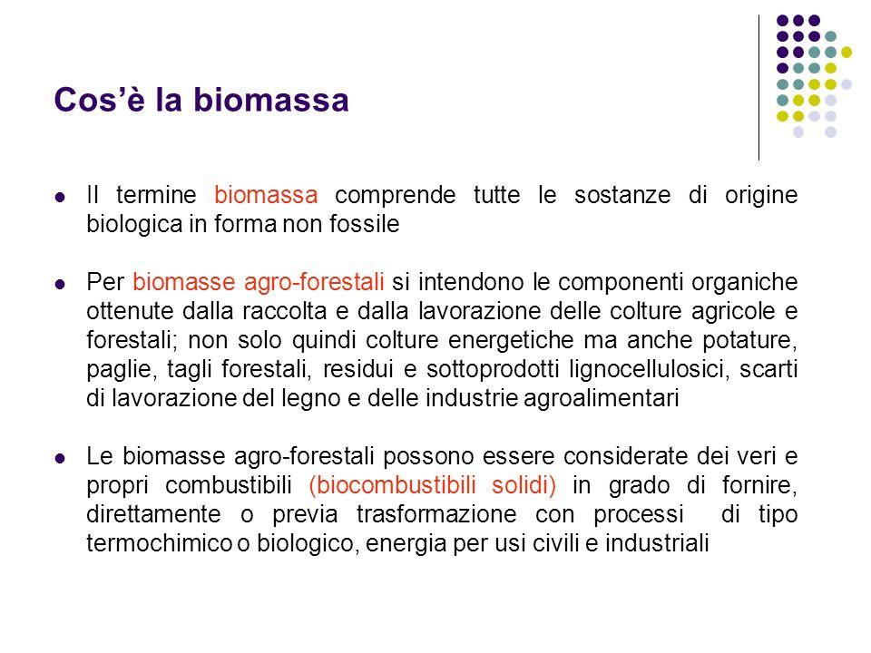 Cos'è la biomassaIl termine biomassa comprende tutte le sostanze di origine biologica in forma non fossile.