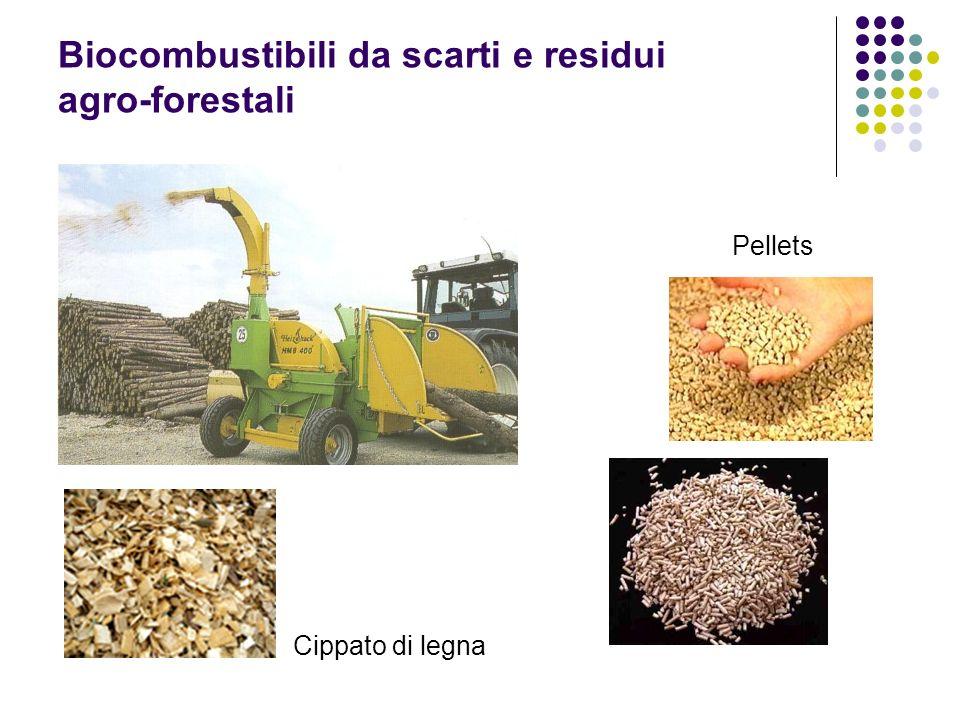 Biocombustibili da scarti e residui agro-forestali