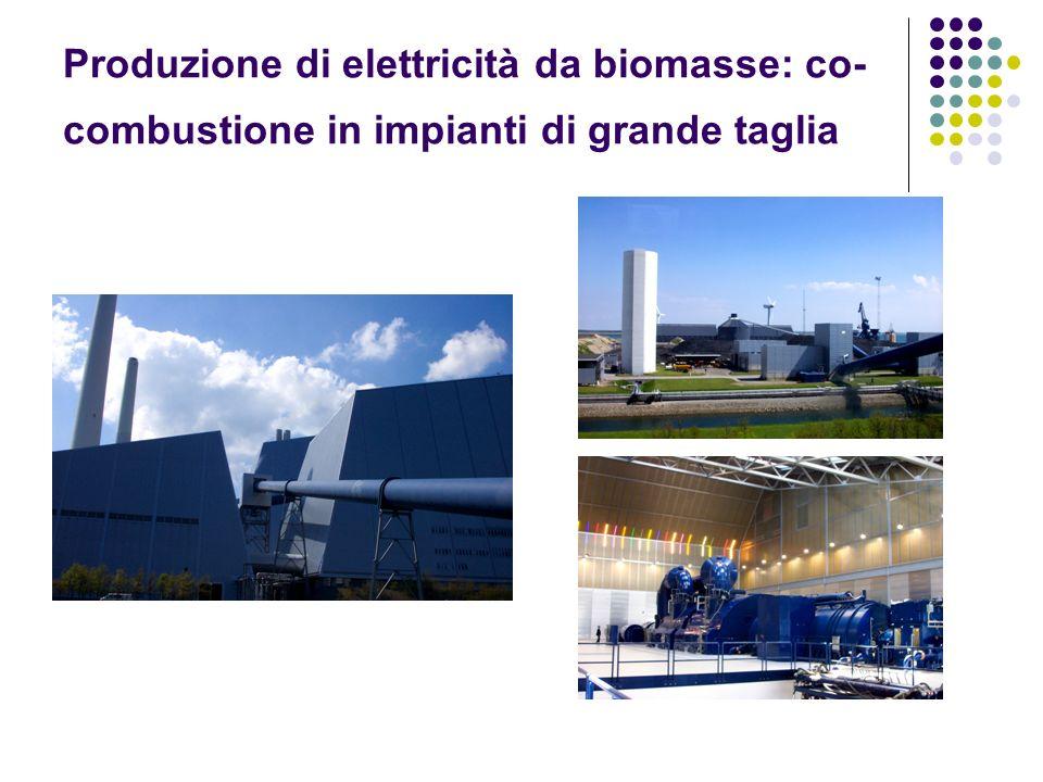Produzione di elettricità da biomasse: co-combustione in impianti di grande taglia
