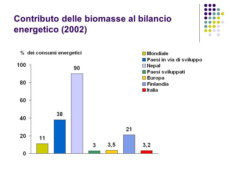 Contributo delle biomasse al bilancio energetico (2002)