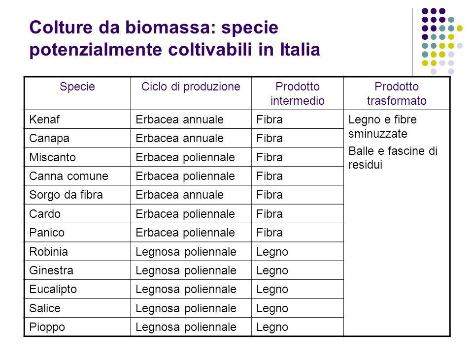 Colture da biomassa: specie potenzialmente coltivabili in Italia
