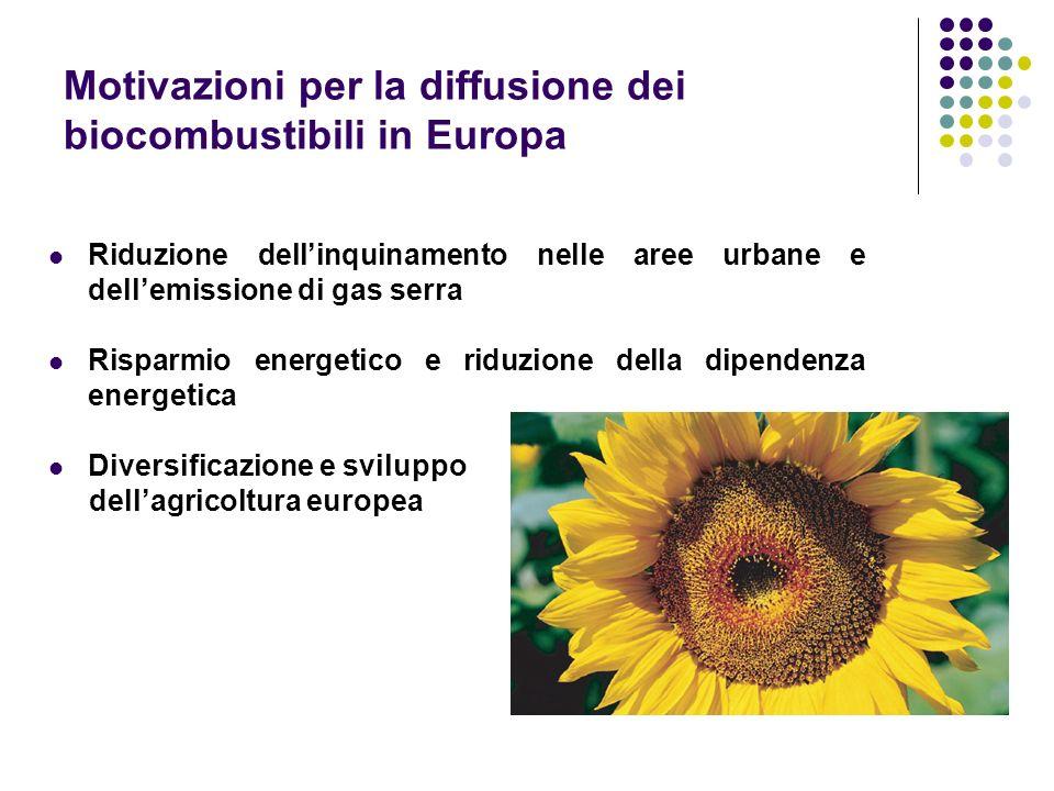 Motivazioni per la diffusione dei biocombustibili in Europa