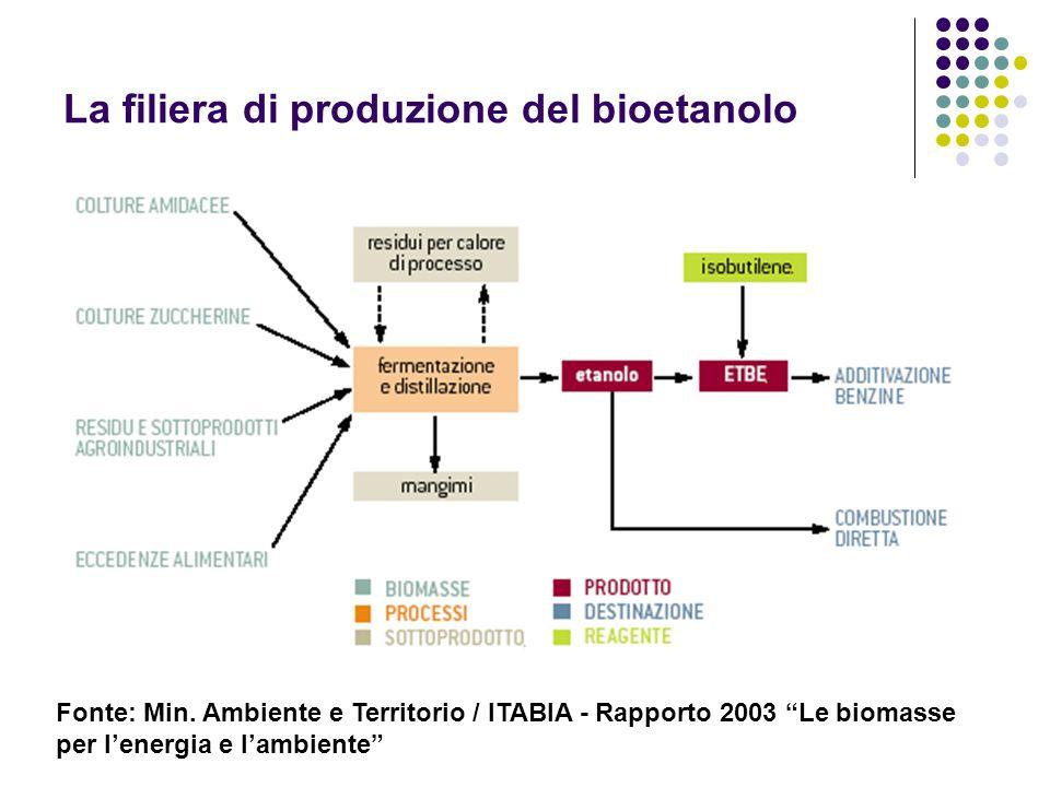 La filiera di produzione del bioetanolo